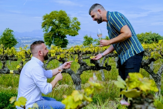 Barcelona wine tour day trip to penedes